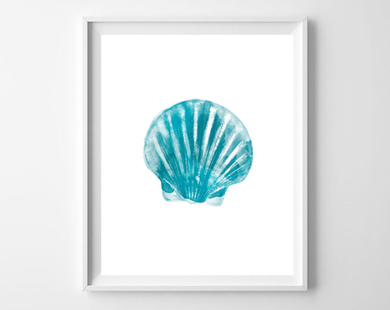 turquoise seashell in frame