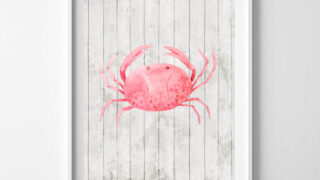 crab printable