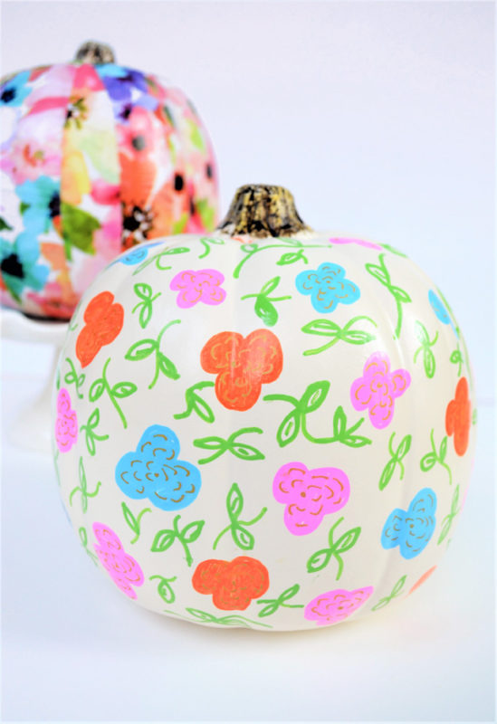 painted pumpkin diy