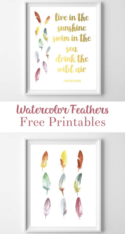 feather printable art