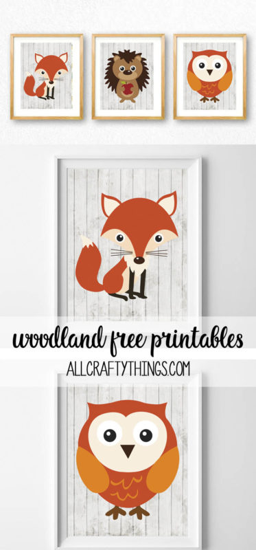 picture relating to Printable Woodland Animals named woodland pets absolutely free printables - all cunning elements