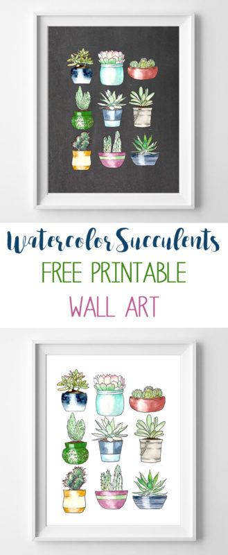 succulents wall art