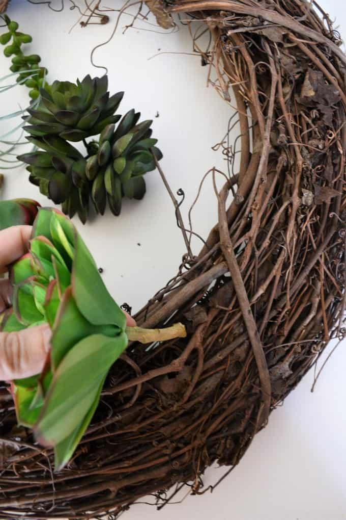 twig succulent wreath
