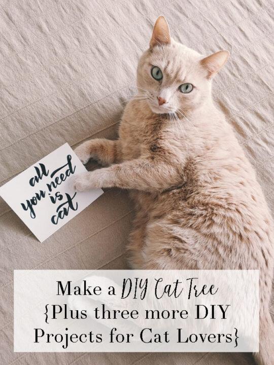 diy cat tree project
