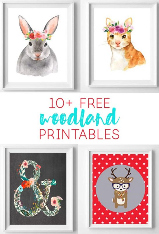 image relating to Printable Woodland Animals named Woodland Nursery No cost Printable Artwork - all cunning aspects