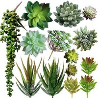 Pack of 14 Assorted Artificial Succulents Picks