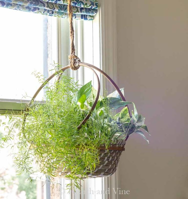 Easy DIY Hanging Basket Planter with Embroidery Hoops
