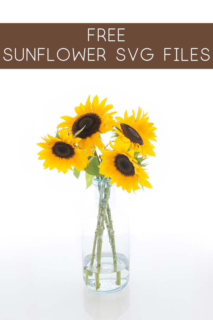 sunflower svg free